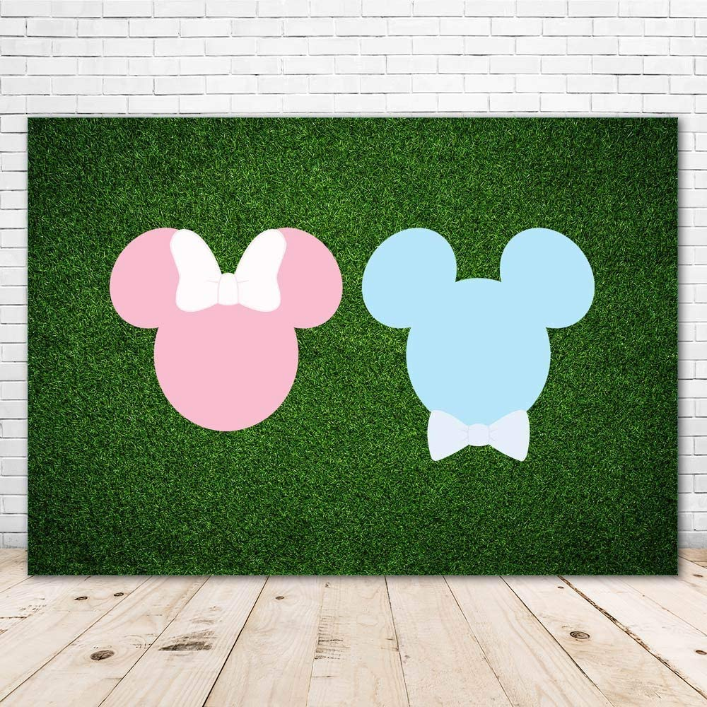 Gender Reveal Backdrop Mickey and Minnie Head 7x5 3D Green Grass Wall Baby Shower Background for Boy and Girl Vinyl Pink and Blue Happy Birthday Backdrops for Kids Party Decor