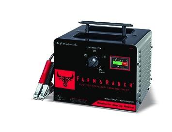 Amazon.com: Schumacher FR01238 - Cargador manual de batería ...