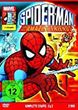 Spider-Man and His Amazing Friends - Staffel 2 + 3 [2 DVDs]