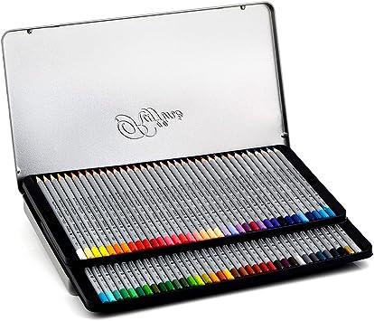 Niutop - Pack de 48 lápices de colores + libro de colorear Secret Garden para adultos o niños: Amazon.es: Oficina y papelería