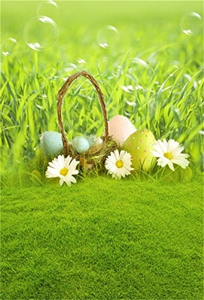 Amazon Com Aofoto 3x5ft Easter Eggs On Meadow Background Spring