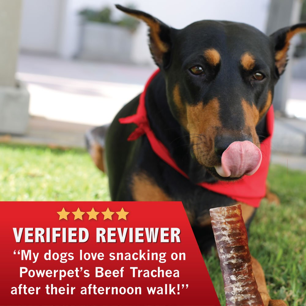 Powerpet: Beef Trachea 6in - Natural Dog Chew - Helps Improve Dental Hygiene - 100% Natural & Highly Digestible - Protein with Low Fat - Beef Jerky Dog Treat - Made from Beef Esophagus by Powerpet (Image #5)