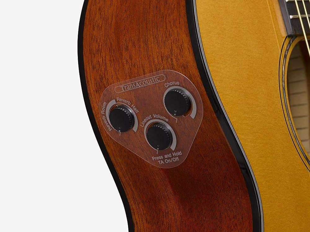 トランスアコースティックギター:コントロール