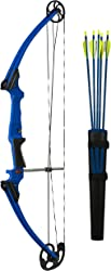 Top 10 Best Youth Compound Bows (2020 Reviews & Buying Guide) 6