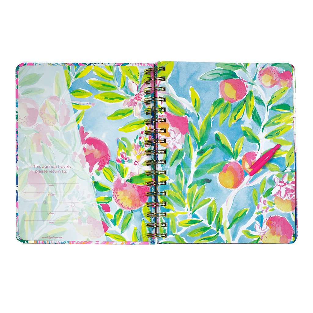 Lilly Pulitzer 17 Month Medium Agenda 2017-2018 (Flamenco Beach)