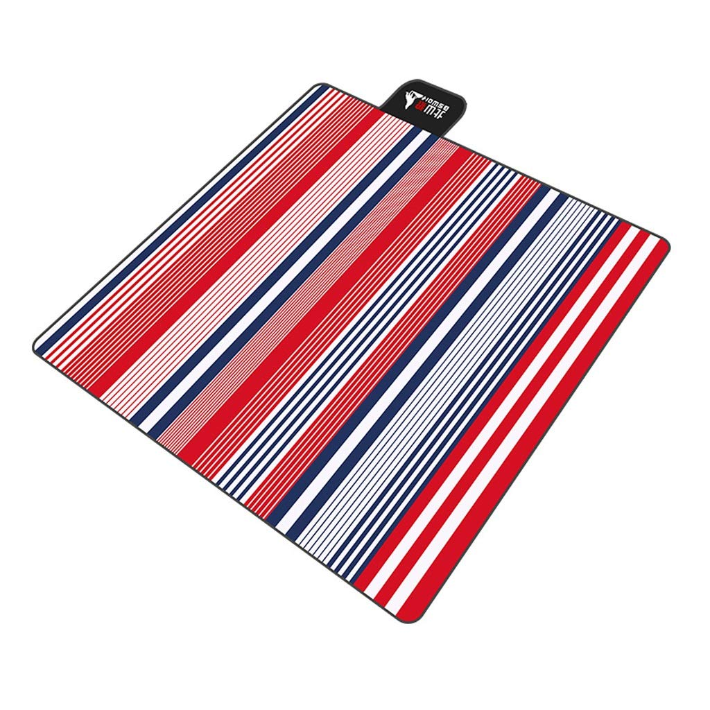 F FH Picnic Mat, Outdoor Portable Thick Spring Picnic Picnic Outing Picnic Wild Beach Mat, 200 × 200cm (color   D)