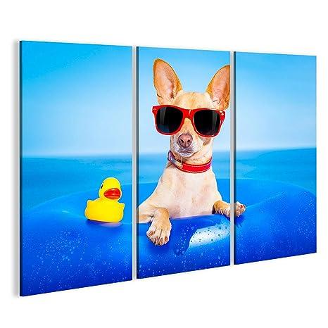 islandburner Cuadro Cuadros Chihuahua Perro en un colchón en ...