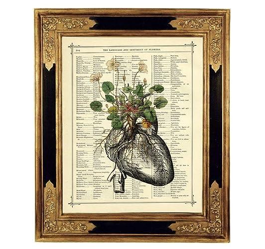 Anatomie Herz Blumen Botanischer Kunstdruck Auf Antiker Buchseite