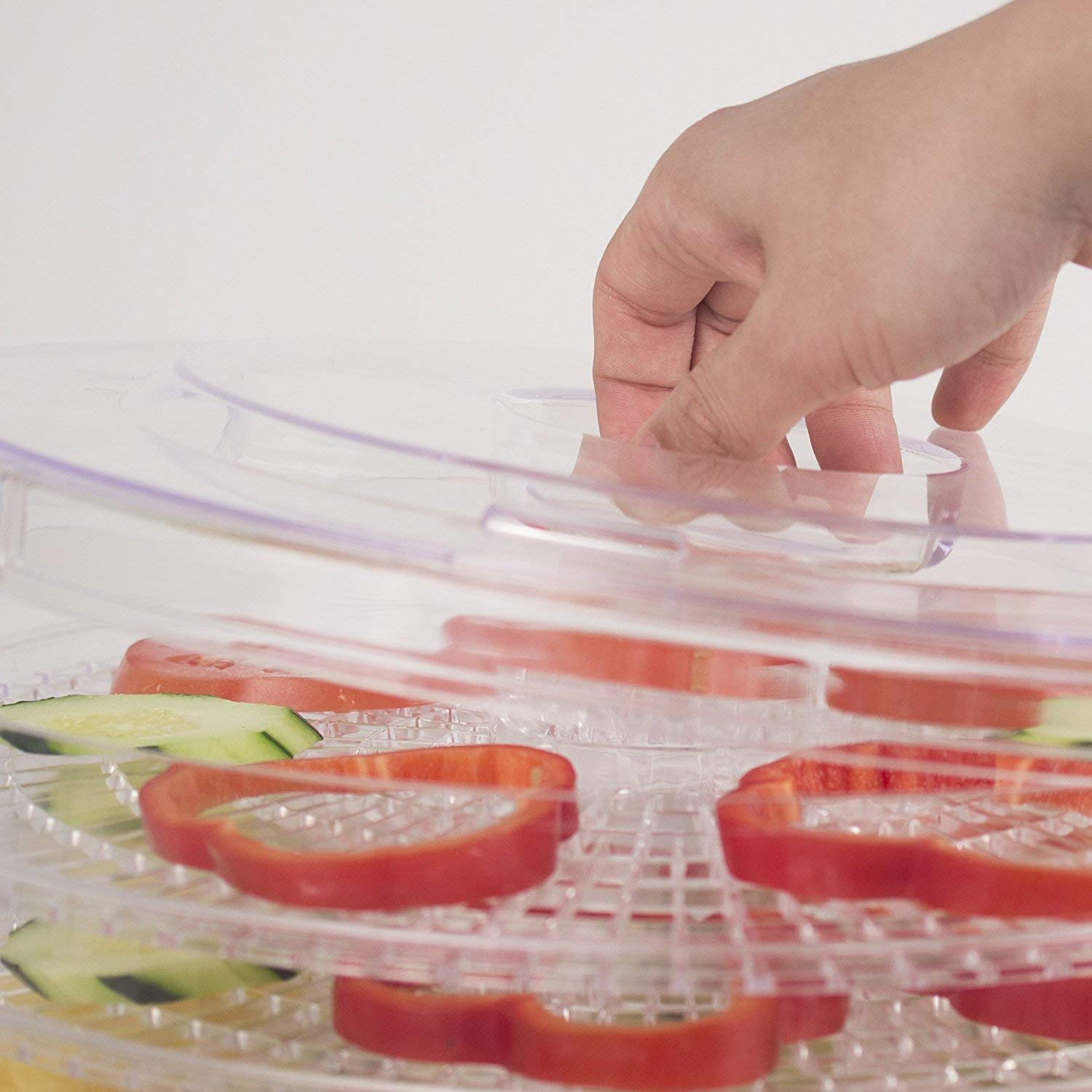 716PPdiF0eL. SL1500 The 5 Best Food Dehydrator in India 2020 (Review)