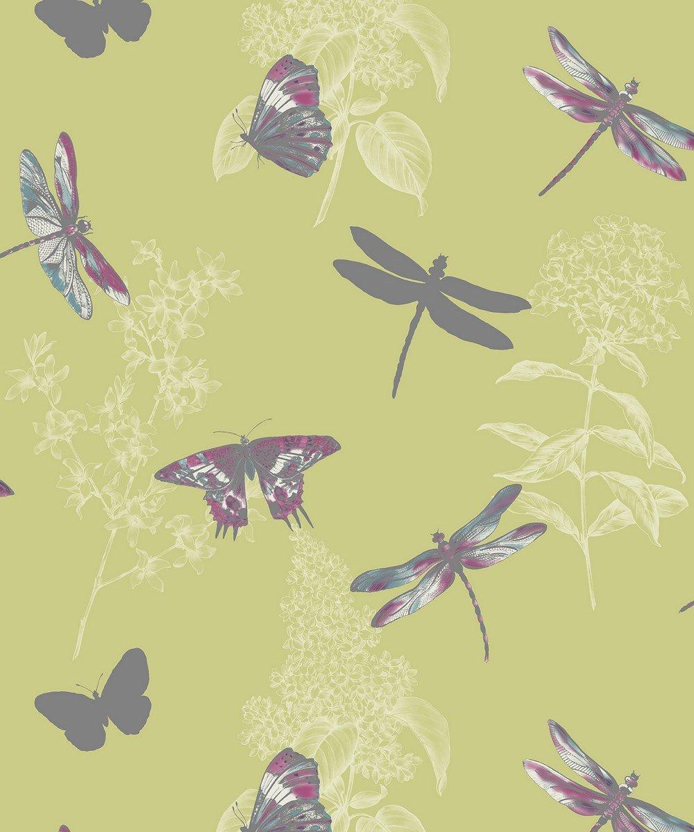 Arthouse 664900 Enchanted Wings Wallpaper Citrus Amazoncouk