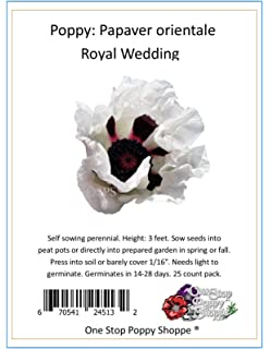 Amazon 200 oriental poppy flower seeds princess victoria 25 oriental poppy flower seeds royal wedding poppies one stop poppy shoppe brand mightylinksfo