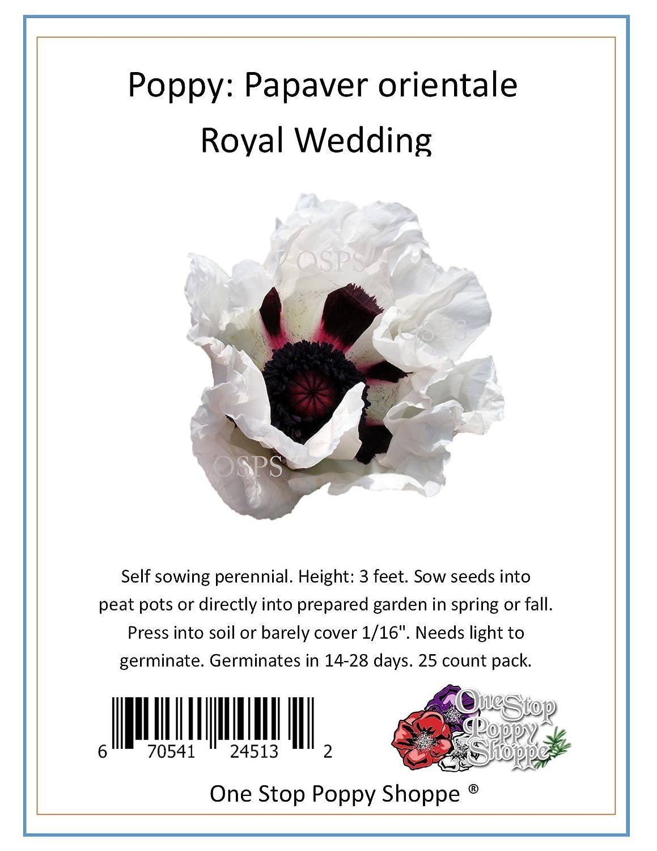 Amazon 25 Oriental Poppy Flower Seeds Royal Wedding Poppies