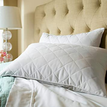 luxury sealy down and feather twin pack pillows set of 2