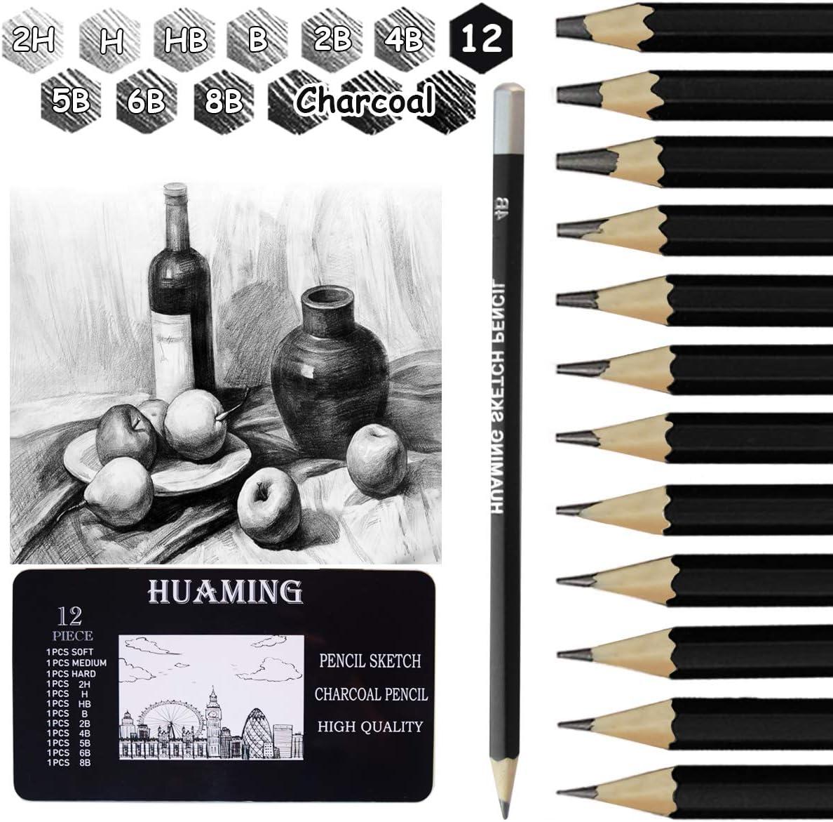 Zeichenstifte f/ür Anf/änger K/ünstler professionelle Skizzierstifte Graphitstift 1 Spitzer und 1 Radiergummi 2H H HB B 2B 4B 5B 6B 8B Bleistifte Set Surcotto 9 Bleistifte mit 3 Kohlestifte
