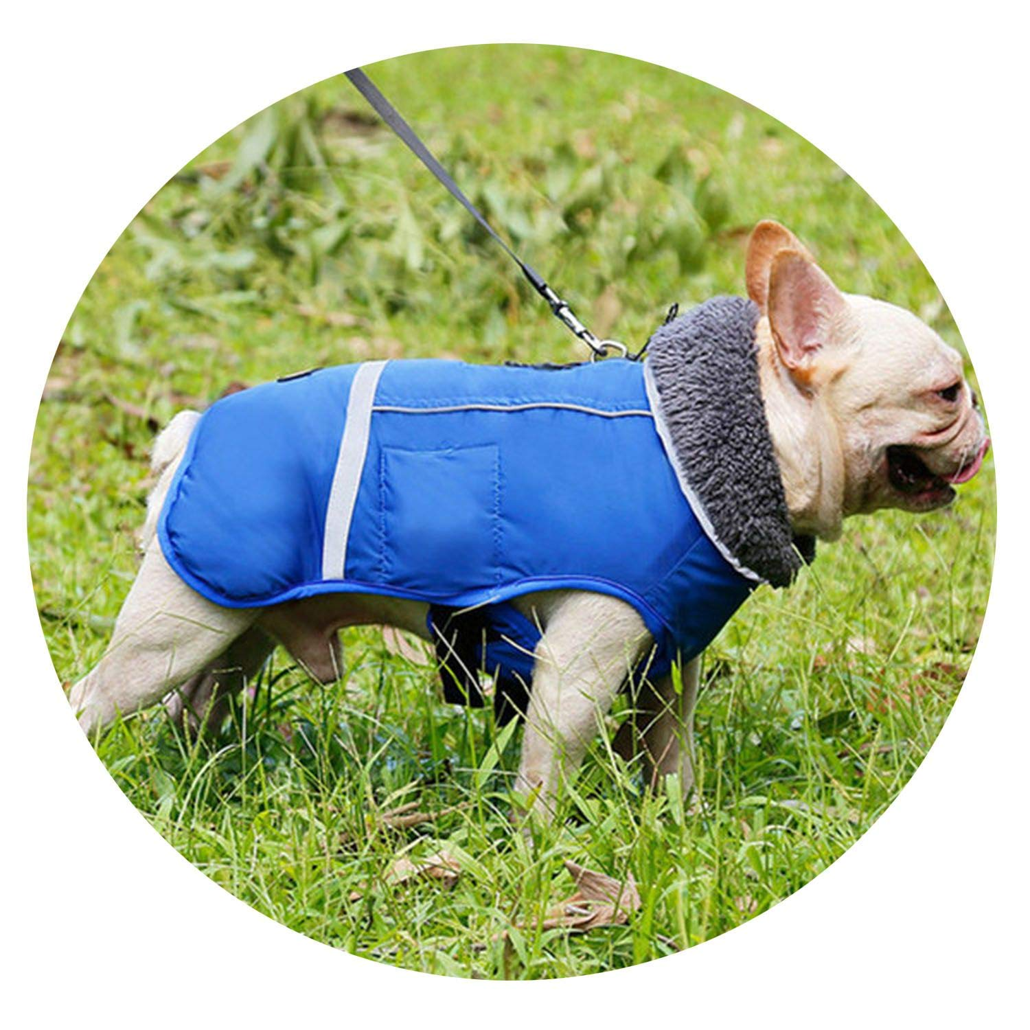 bluee S bluee S Dog Clothes Winter Waterproof Outdoor Pet Dog Jacket Thicken Warm Dog Coat for Small Medium Large Dog Adjustable Pet Clothes 3XL,bluee,S