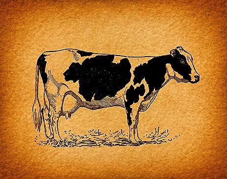 Amazon.com: Old Fashioned Cow Print Wall Art Farm Animal Retro ...