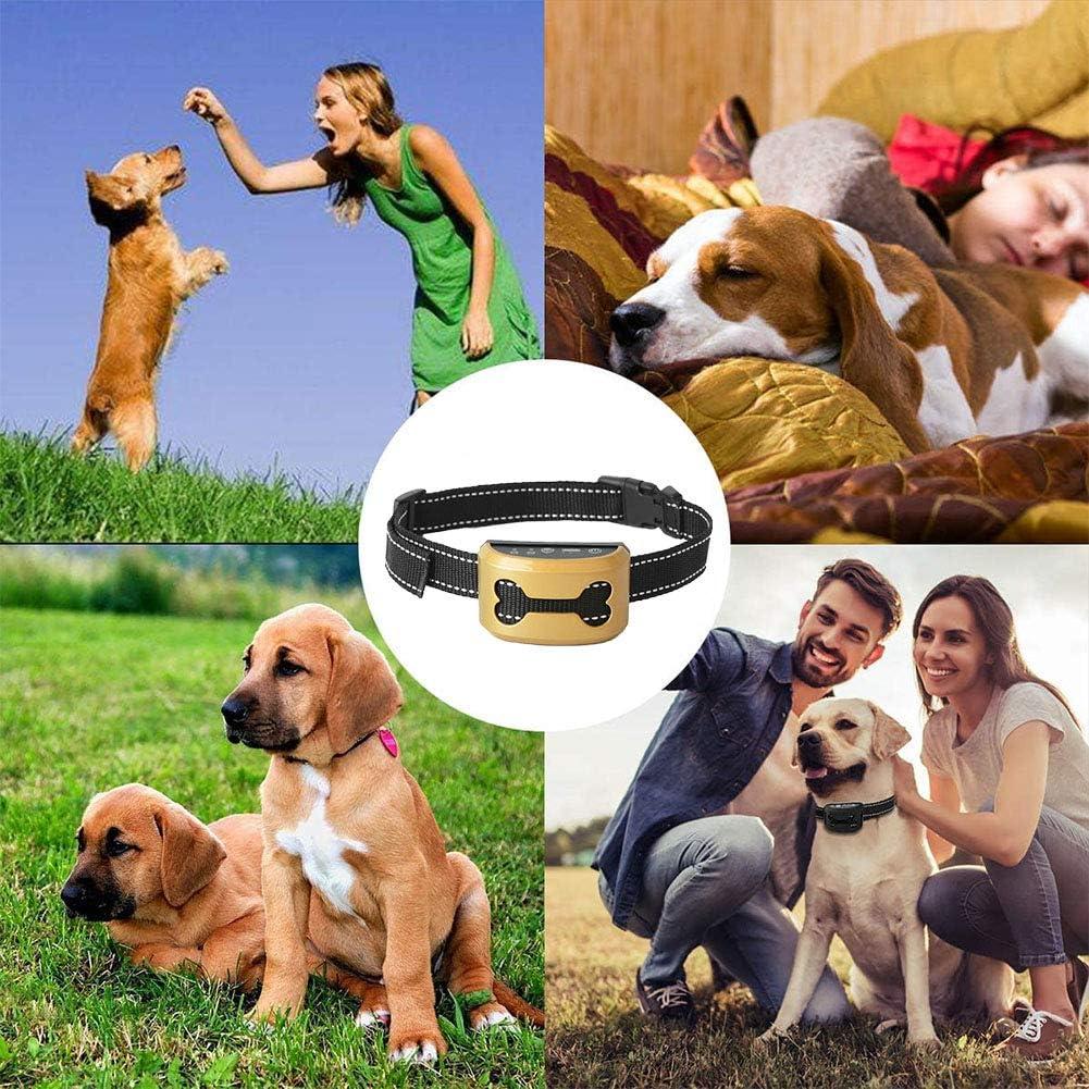 wasserdicht 01 Hundehalsband wiederaufladbar schwarz Anti-Bell-Halsband kein Schock mittelgro/ße und gro/ße Hunde Haustier-Trainingshalsband mit LED-Licht und verstellbarem G/ürtel f/ür kleine