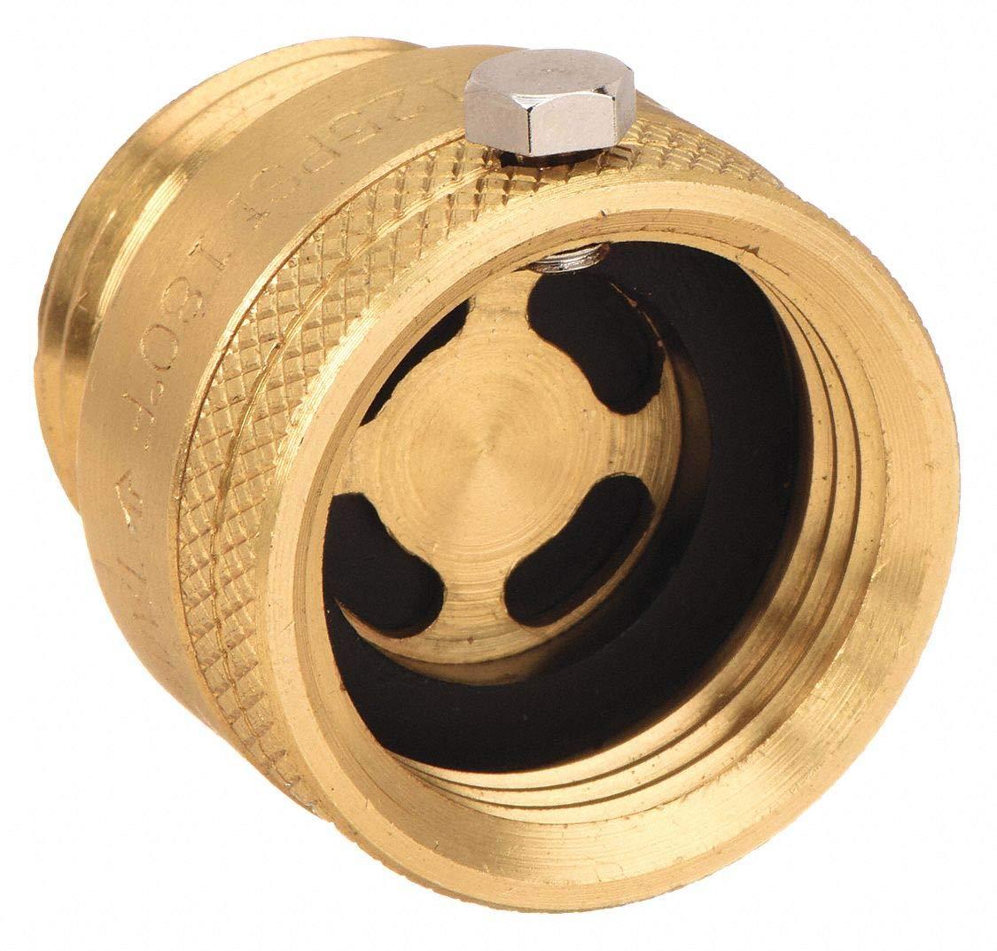 Vacuum Breaker, 3/4 In., GHT, Brass, 125 psi