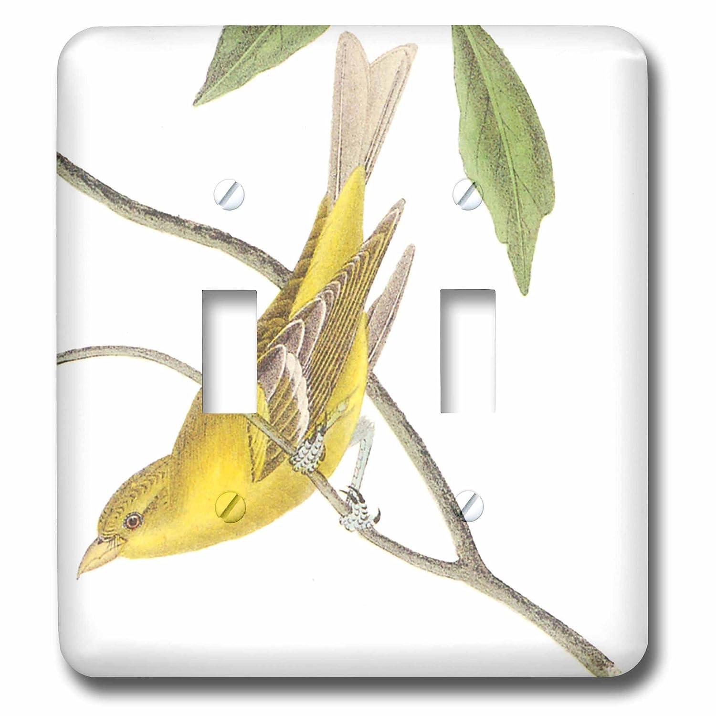 【期間限定】 3drose – LLC 3drose lsp LLC lsp_ 130647_ 130647 2イエロー鳥ヴィンテージアート動物 – ダブル切り替えスイッチ B00DD6KGSO, キクスイマチ:168cb83d --- svecha37.ru