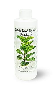 Fiddle Leaf Fig Tree Fertilizer