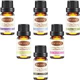 Oak Leaf Aromatherapy Essential Oils Set of 6 100% Pure Lavender, Peppermint, Tea Tree, Lemongrass, Eucalyptus and Blend, 10mL/bottle