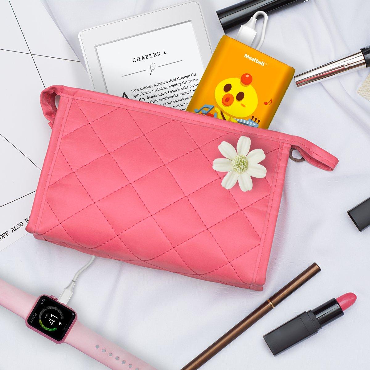 Amazon.com: PISEN - Cargador portátil, batería externa de ...