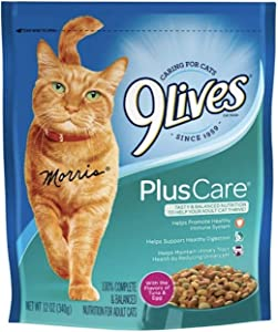 9Lives Cat Plus Care Dry Food 12oz #13291, One Size, Multicolored
