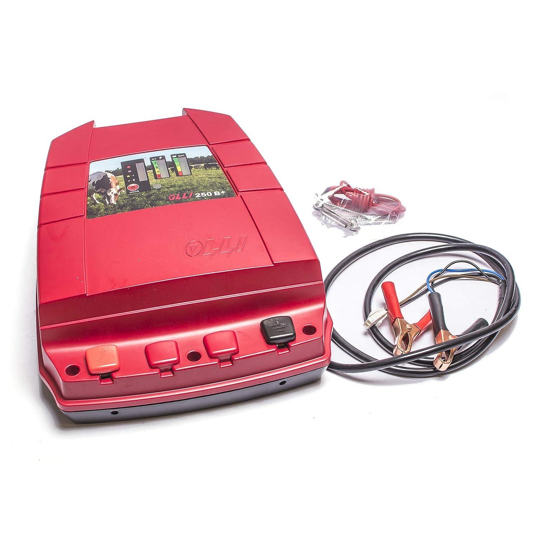 negozio online Elettrificatore GEOAGRO OLLI 250B+ a Batteria 12 12 12 Volt Potenza 2J in Uscita Made Finlandia  alta qualità generale