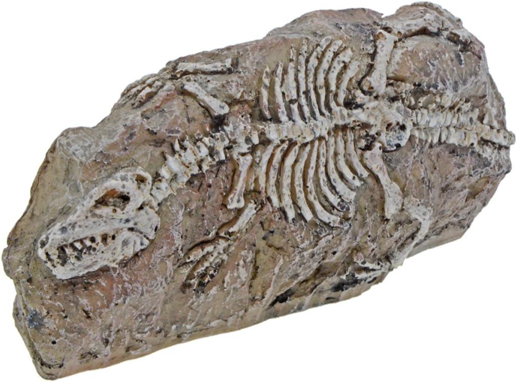 Saim Aquarium Resin Dinosaur Fossil Ornament Decor for Fish Tank