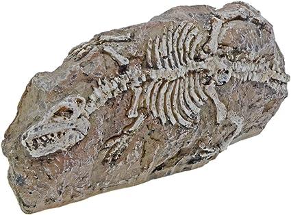 Fish Tank Ornament Aquarium Dinosaur Fossil Resin Cave Landscaping Decoration
