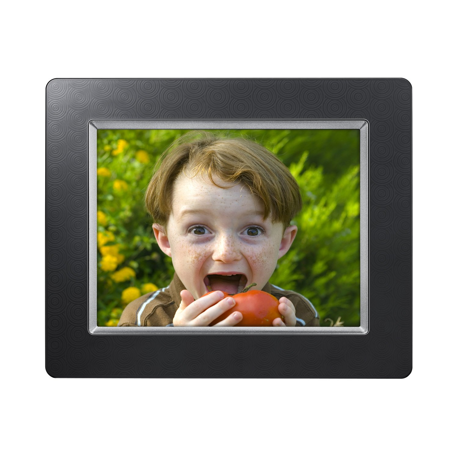 Amazon.com : Samsung SPF-85H 8-Inch Digital Photo Frame UbiSync USB ...