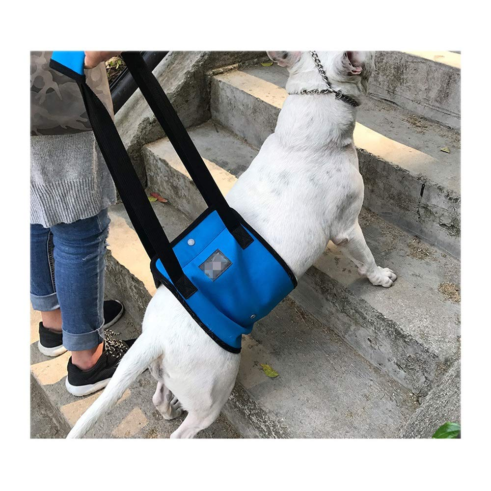 L Dog Walking Auxiliary Belt, bluee High Old Age Dog Disabled Dog Hind Leg Predection with Pet Power Belt (Size   L)