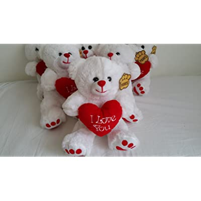 """10"""" (25cm) White Teddy Bear Holding a Red heart with """"I Love You"""" inscribed on it"""