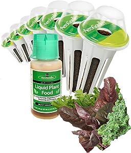 AeroGarden Green Smoothie Seed Pod Kit with Kale