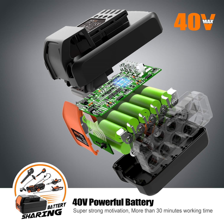 der b/ürstenlose Motor halbautomatische Fadenkontrolle professionelle Batterieanlage 40V 2.5Ah die Schneidbreite 30 cm LGT01A TACKLIFE Akku Rasentrimmer Drahtschneidesystem