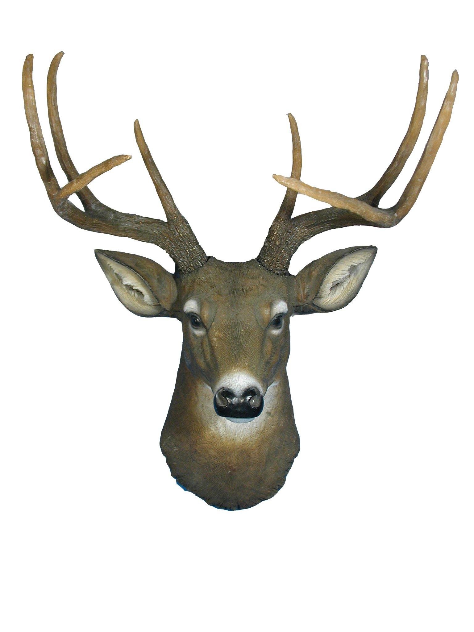 ih casa décor Duke Deer Head by ih casa décor