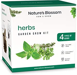 Nature's Blossom Kitchen Herb Garden Indoor Seed Starter Kit. Grow 4 Different Herbs from Seeds at Home. Gardening Gifts for Kids and Adults.