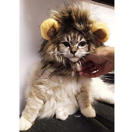 fitTek® FACILLA Sombrero Peluca Disfraz León Pelo Marrón Cosplay para Gatos Perrito H...: Amazon.es: Juguetes y juegos