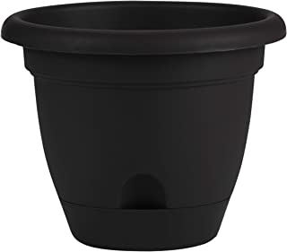 product image for Bloem Living LP1600 Lucca Self-Watering Planter, 16-Inch, Black