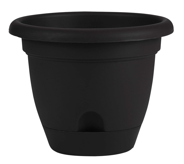 Bloem 010277 Lp1000 Lucca Self Watering Planter, 10-Inch, Black, 10 Inch