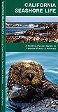 California Seashore Life: A Folding Pocket Guide to Familiar Plants & Animals (Pocket Naturalist Guide Series)