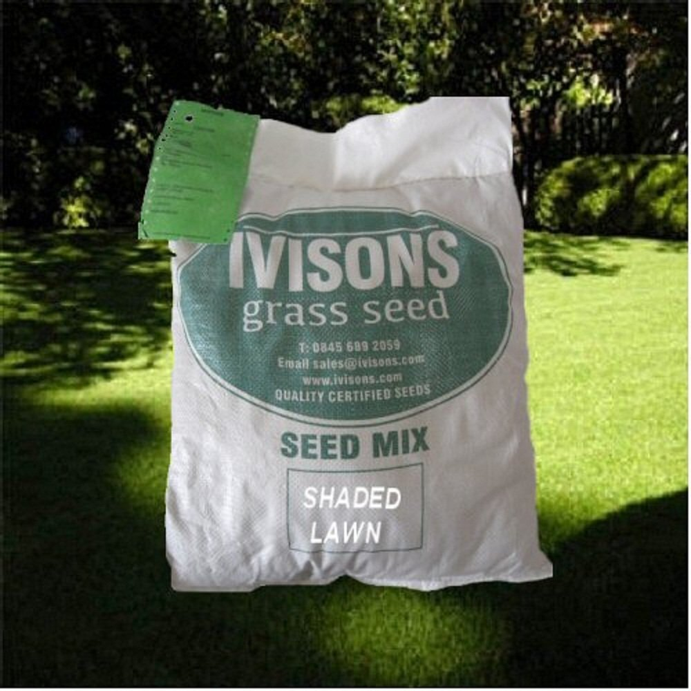 5 Kg Shaded Area Lawn Grass Seed Covers Upto 142m2 Quality Certified Seeds From Ivisons