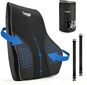 Feagar Lumbar Support Pillow, Memory Foam Back Support for Office Chair/Car Seat, with 2 Adjustable Straps and Breathable Mesh Cover, Orthopedic Back Cushion for Back Pain Relief