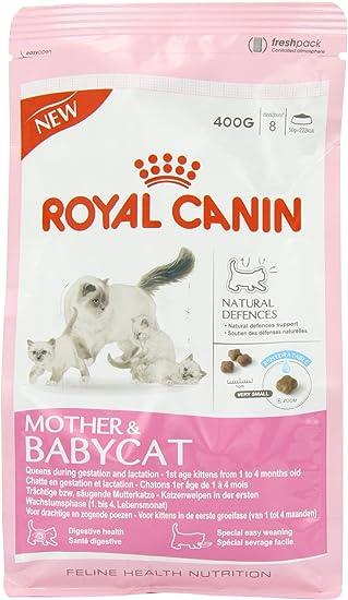 Royal Canin C-58420 Baby Gato - 400 gr: Amazon.es: Productos para ...