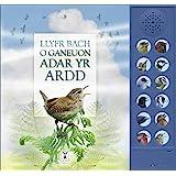 Llyfr Bach O Ganeuon Adar Yr Ardd: The Little Book of Garden Bird Songs (Welsh edition)