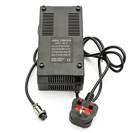 PMYZ Cargador de batería para scooter eléctrico de 48 V de 1 ...