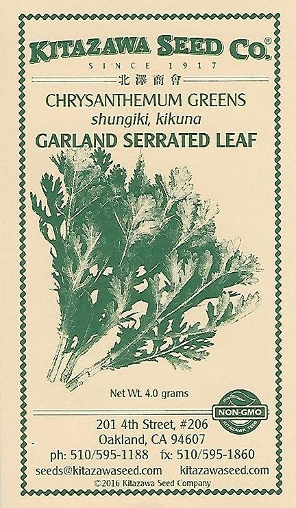 Amazon.com: Crisantemo verde – Guirnalda serrado Hoja – 4.0 ...