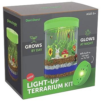 Kit Terrario Iluminado para niños con luz LED en la Tapa ...