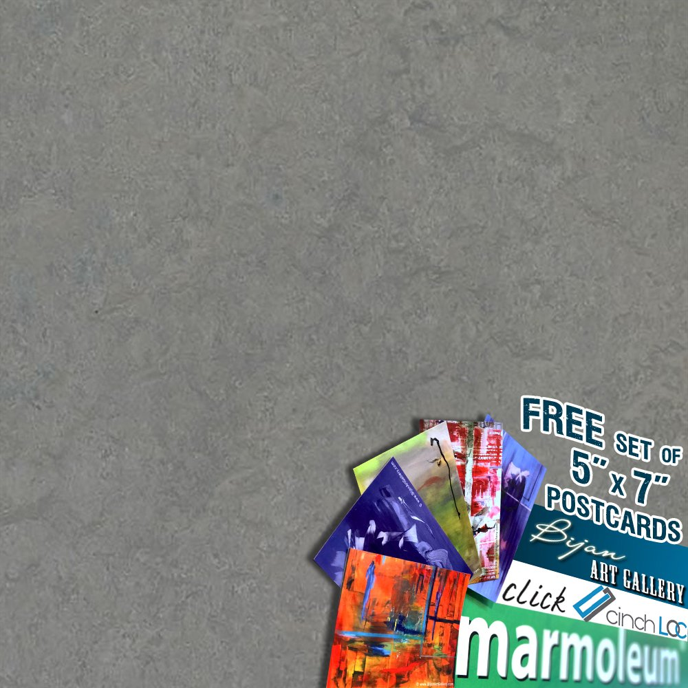 MARMOLEUM CLICK Cinch Loc 12''x36'' Planks 1 BOX BUNDLED with Exclusive Bijan Art Gallery Postcards as a FREE Gift. [7panels/20.34 sq ft/Box] 933866 eternity