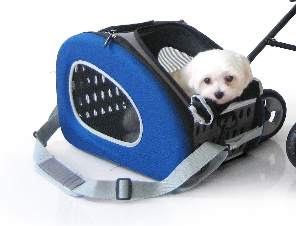 InnoPet Pet Stroller,IPS-020/Blue, Dog Carrier, Trolley, Trailer, 5-in-1 Pet Buggy.Foldable pet Buggy, Pushchair, pram for Dogs and Cats. by InnoPet